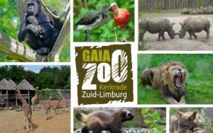 GaiaZOO-Leukste-Uitje-van-Nederland_11800